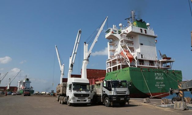 Djibouti Free Trade Zone Causes Concern Over China Expansion