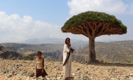 Socotra Island: UNESCO-Protected 'Jewel of Arabia' Threatened by Yemen's Civil War