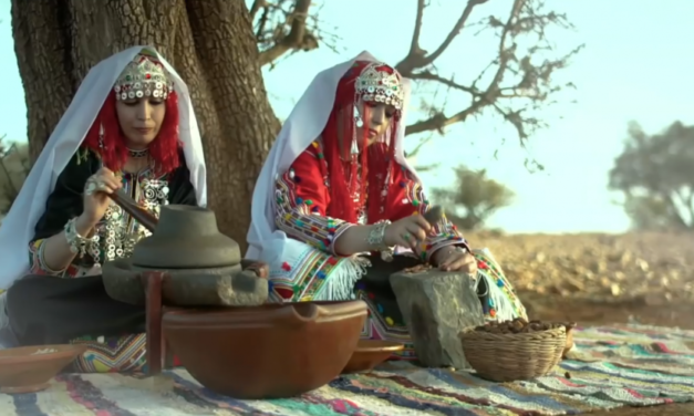 Argan Oil: Is Outside Exploitation of Morocco's Liquid Gold Imperiling Local Coops?