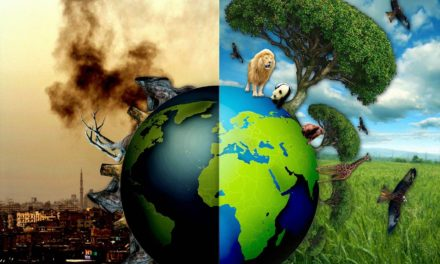 Environmentalism and Islamic Ecotheology