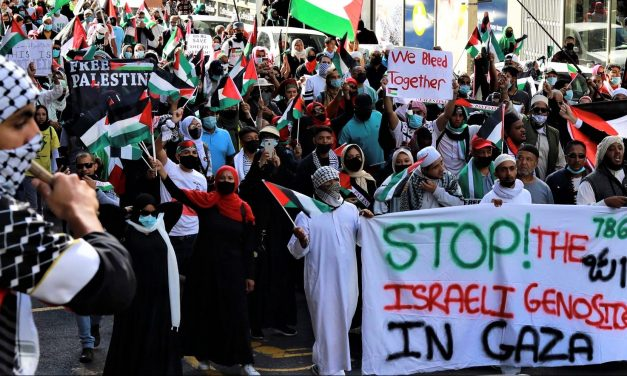 We Must Maintain the Momentum for Palestine Against Israel's War Crimes