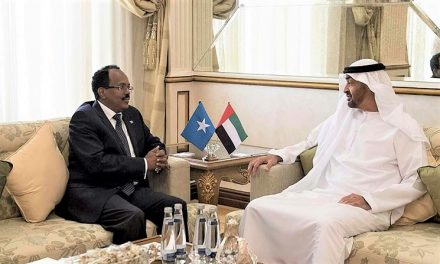 UAE's Scheming in Africa Will Only Sow More Instability