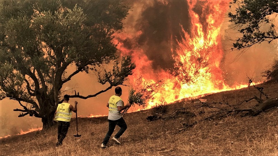 Volunteers use whatever they can find to try to extinguish the wildfires in the Kabylie region east of the capital Algiers Algeria Aug. 10 2021. Reuters