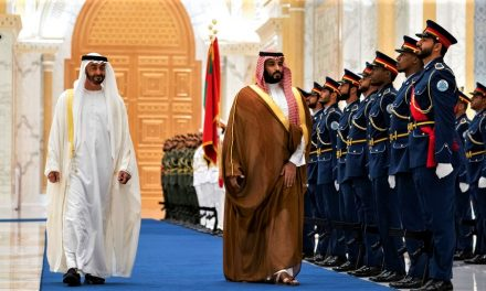 The UAE Defies Saudi Arabia and Entrenches Further in Yemen